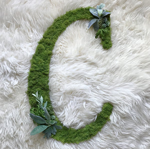 Traditional Custom Letter - Greenery