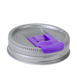 Cool Gear | Replacement Mason Jar Lid, Small in Silver / Purple