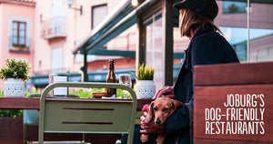 5 Great Dog-Friendly Restaurants in Joburg