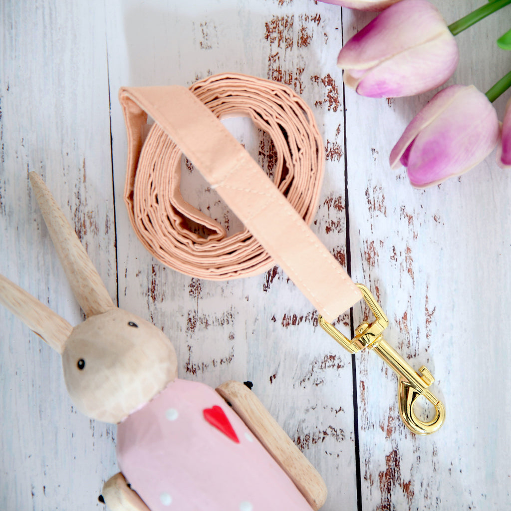 Peachy Dog Lead - Pipps by Pippa