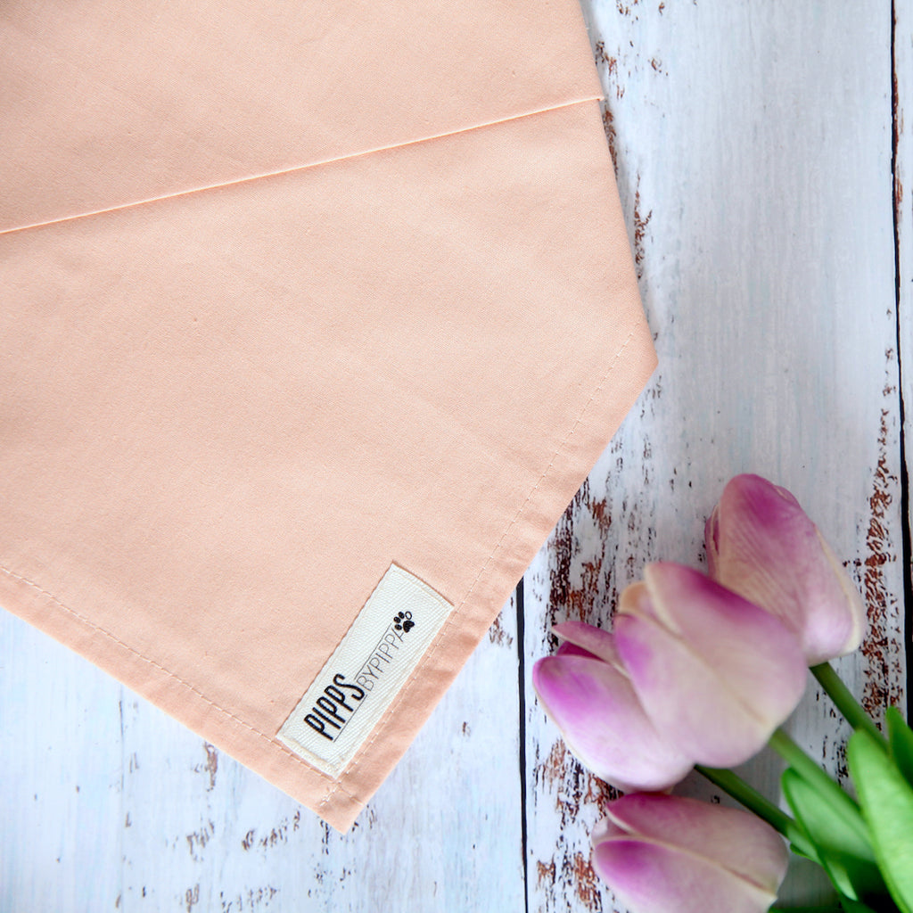 Peachy Dog Bandana - Pipps by Pippa