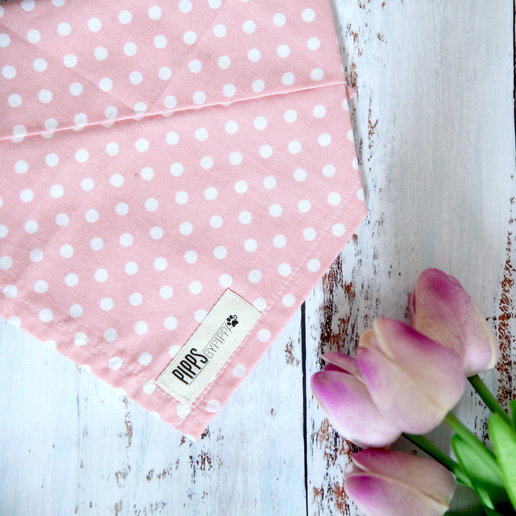 Pink Freckles Dog Bandana - Pipps by Pippa