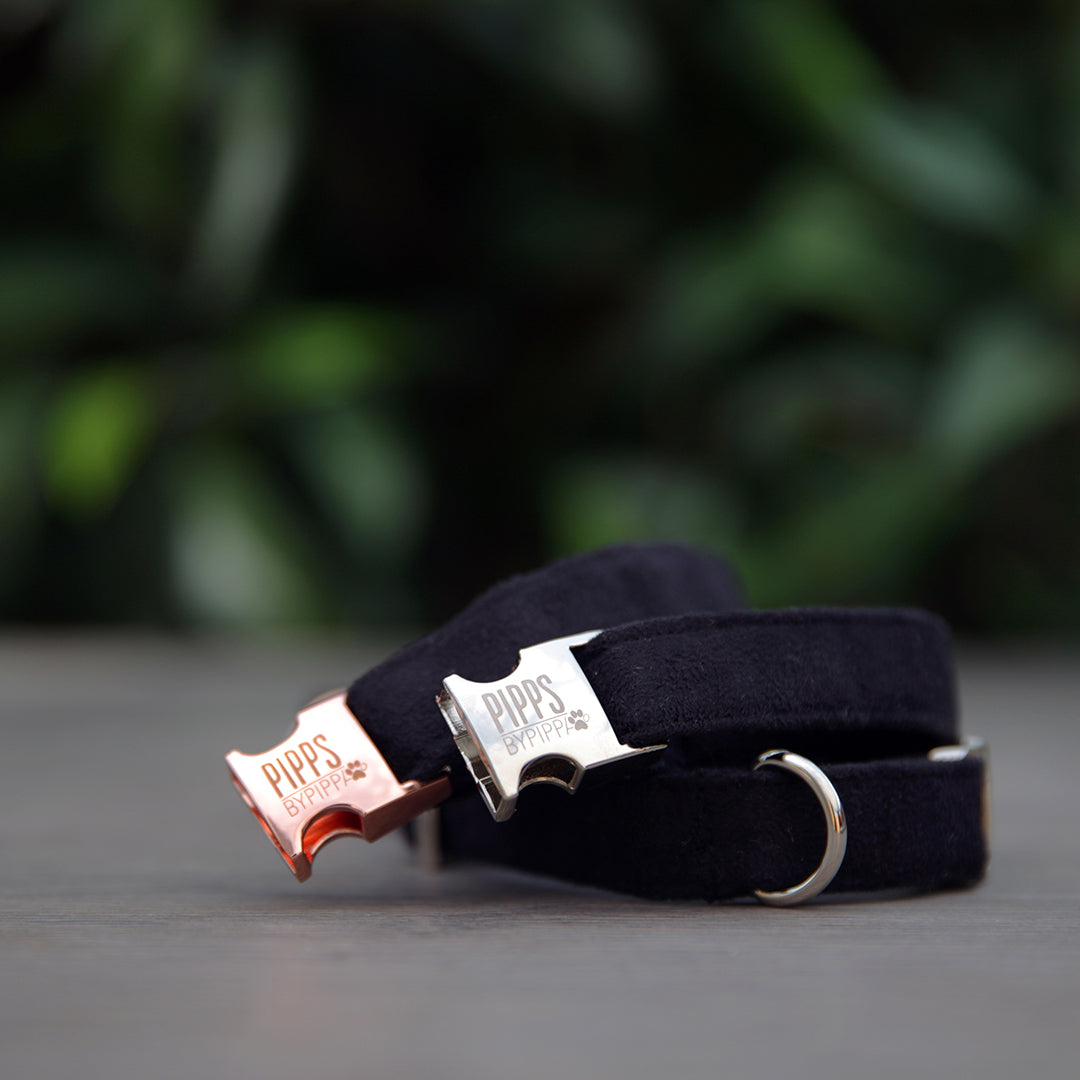 Onyx Dog Collar - Pipps by Pippa