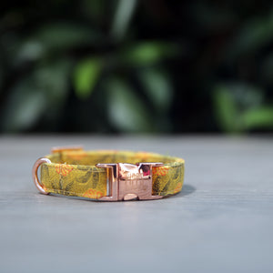 Sunflower Dog Collar - Pipps by Pippa