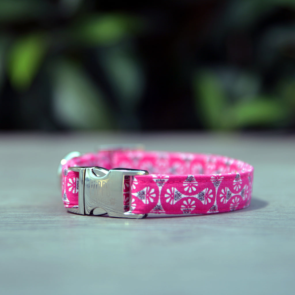 Dandelion Dog Collar - Pipps by Pippa