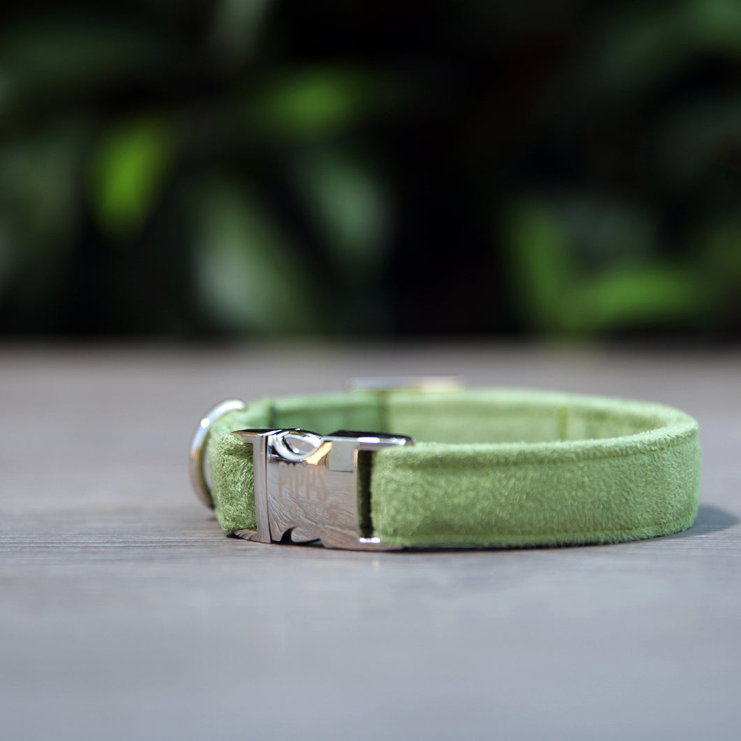 The Ivy Dog Collar - Pipps by Pippa