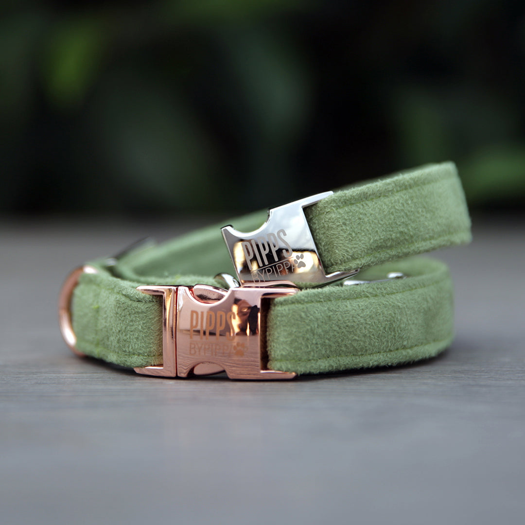 Ivy Dog Collar - Pipps by Pippa