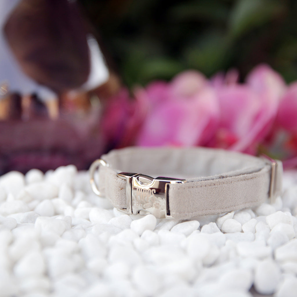 Silver Lining Dog Collar - Pipps by Pippa