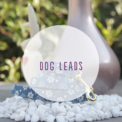 Custom Dog Lead - Pipps by Pippa