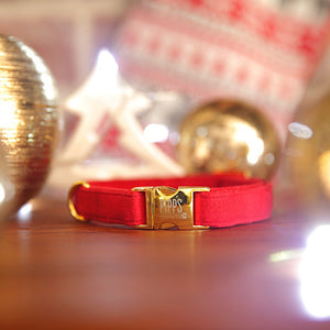 The Holly Dog Collar - Pipps by Pippa