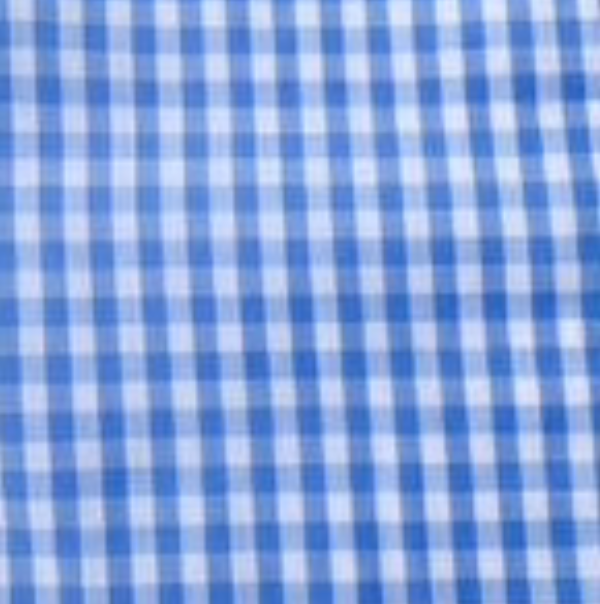 Baby Blue Gingham Straight Pants