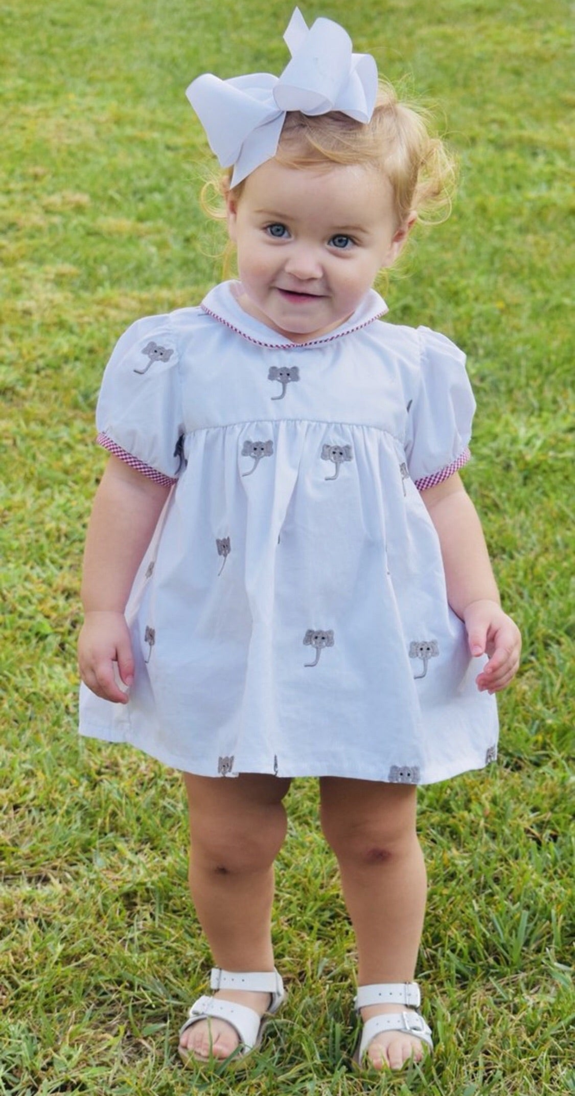 Embroidered Elephant Mini Dress