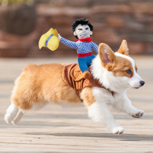 Cowboy Rodeo Dog Costume