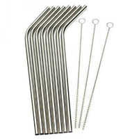 Stainless Steel Straw with cleaner