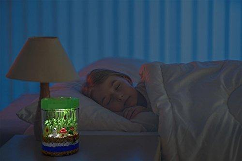 Light-up Terrarium Kit for Kids with LED Light on Lid | Create Your Own Customized Mini Garden
