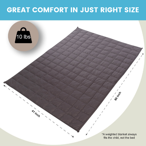 10 lbs Weighted Blanket with Removable Cover - 41x60 - Grey