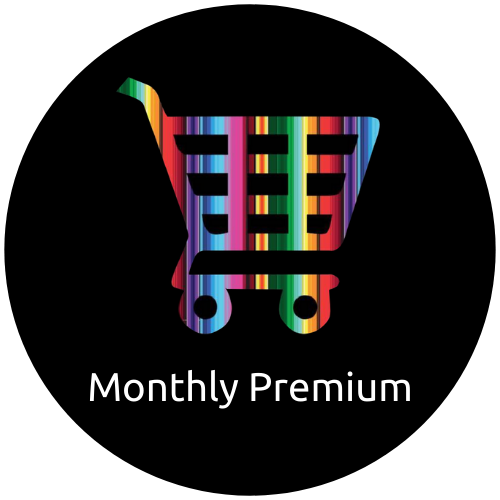 Monthly Premium Shopify Support