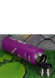 Dream Stainless Steel 800ml Water Bottle