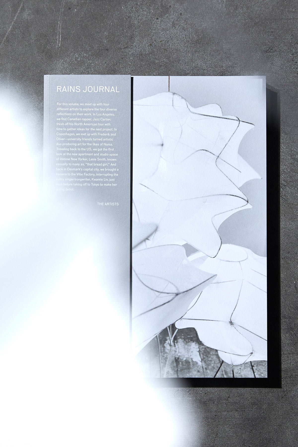 Rains Journal Vol. 13 Cover