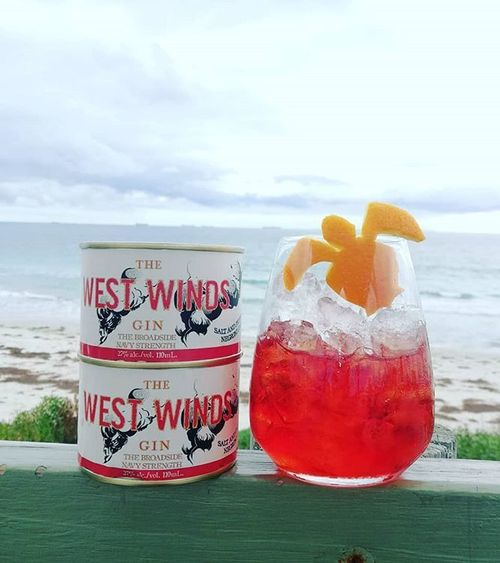 The West Winds Gin Newsletter - June 2018