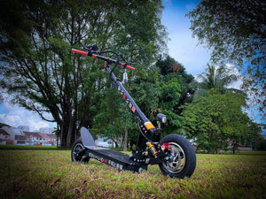 SEIGAIHA™ CARBON ELECTRIC SCOOTER (UP TO 75/120KM DISTANCE)