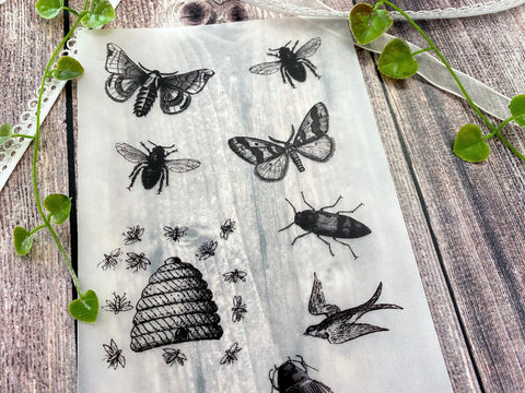 Vellum Paper Theme Vintage Wild Live, Insects, Bugs, Fly, Butterfly, Honey Bee, Animals V271