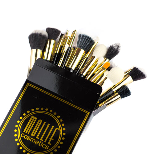 25 Piece Brush Set (Full Collection)
