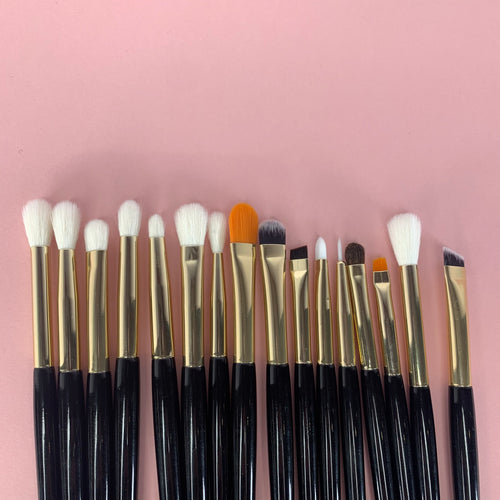 Eye Brush Set - 16 Brushes