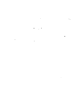 Baby/Toddler Little Twin T-Shirt Black