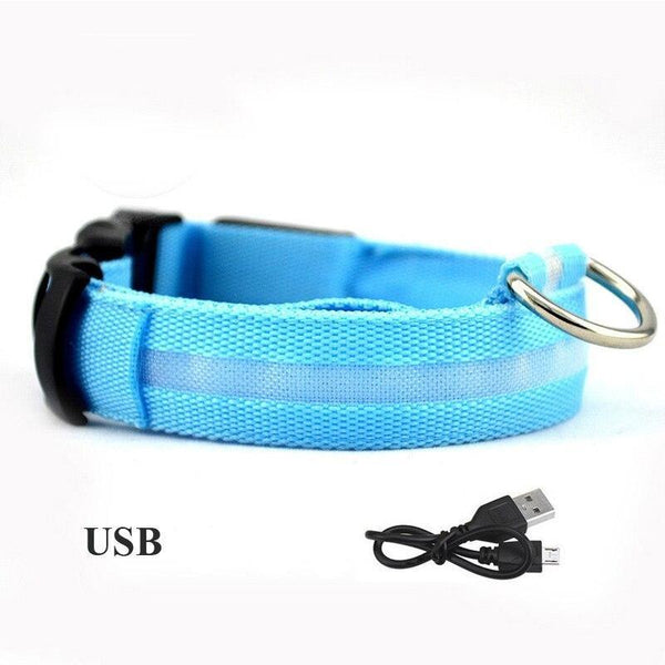 LED USB luminous dog collar