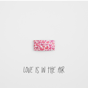 Love Is In The Air Leather Snap Clip
