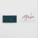 SEPTEMBER 2019 | Teal Leather Snap Clip