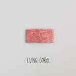 Living Coral Leather Snap Clip