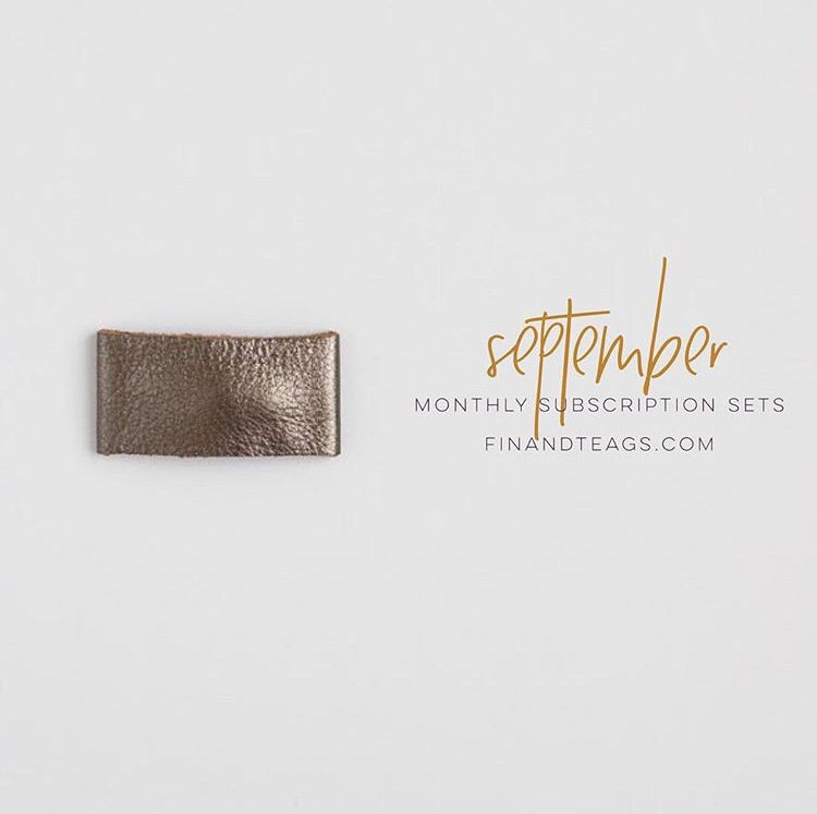 SEPTEMBER | Metallic Leather Snap Clip