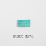 Turquoise Waters Leather Snap Clip