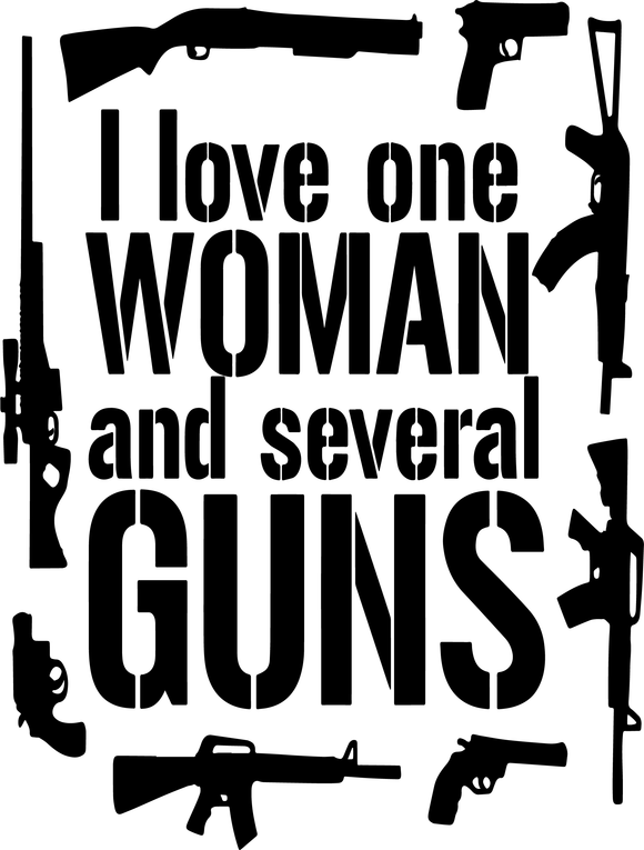 I Love One Woman and Several Guns Tee
