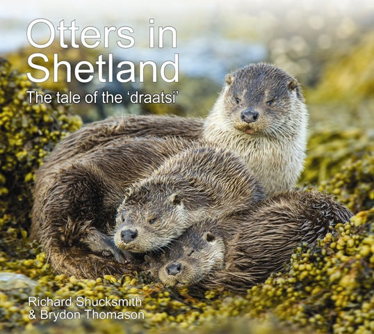 "Otters in Shetland - The tale of the ""draatsi"""