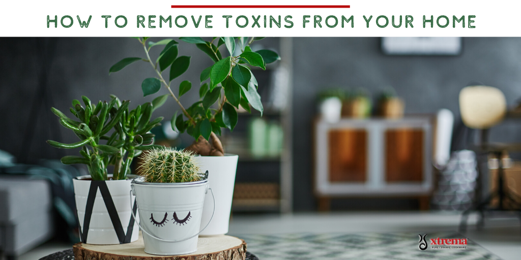 detox your home during coronavuris