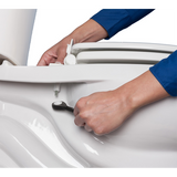 Toilet Seat - Standard Plus, Toilet and Bathroom, The Care Home Designer