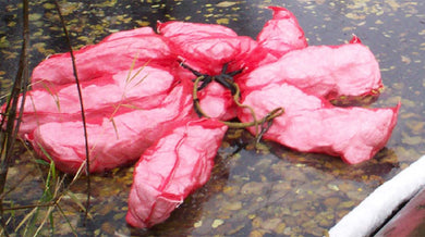 Net Bag Pillows - Oil Only