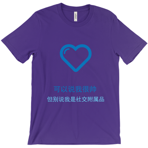 Handsome Adult T-shirt (Chinese)