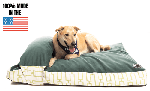 Crushed Memory Foam Dog Bed (Removable Pillow)