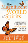 The Magnificent World of Spirits: Eyewitness Accounts of Where We Go When We Die - Paperback