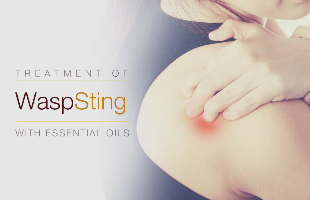 Treatment of Wasp Sting with Essential Oils