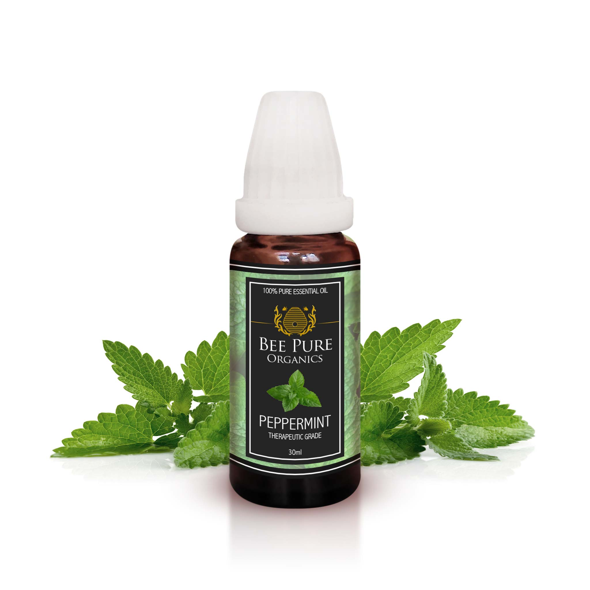 Peppermint (Pudina) Premium Essential Oil