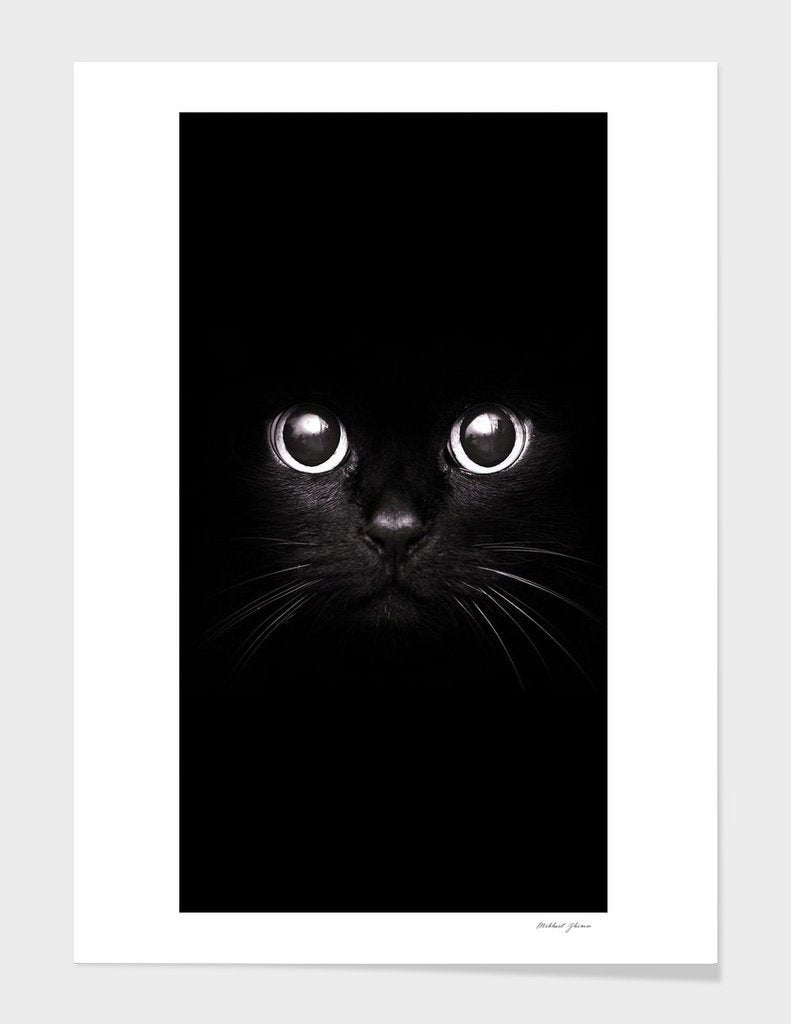 The Black Cat Frame Home - Wall Art Tigerlily and Me