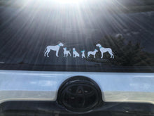 LONG bois & the House Hippos Car Decal
