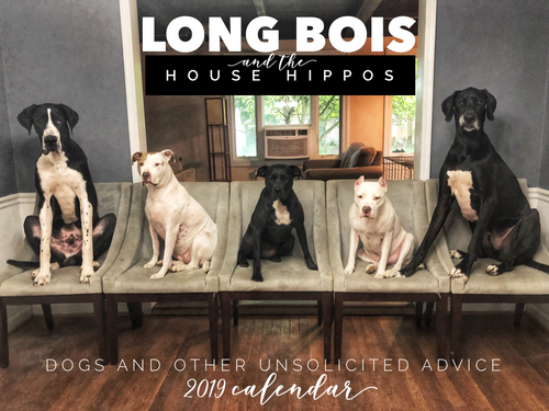 2019 L O N G bois & the House Hippos CALENDAR