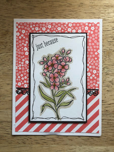 Handmade Greeting Cards - Assorted 5 pack