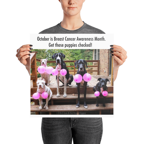 L O N G bois & the House Hippos Breast Cancer Awareness Poster